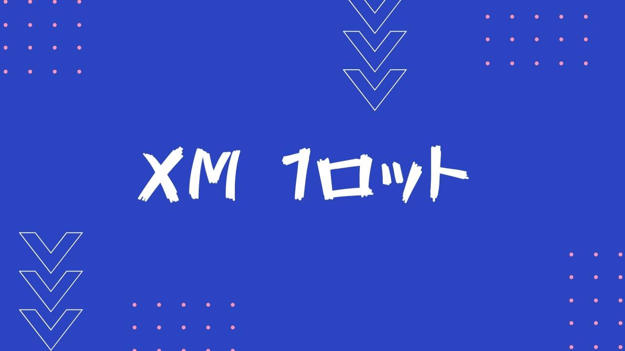 【XM】1ロットは10万通貨?通貨単位と適正ロットを解説
