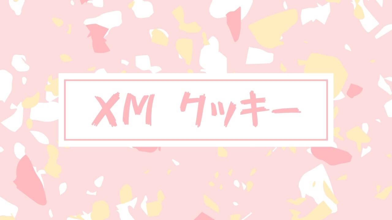 【疑問】XM公式「本ウェブサイトはクッキーを利用します」→続行でOK