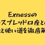 Exnessのロースプレッド口座とは?特徴と使い道を徹底解説!